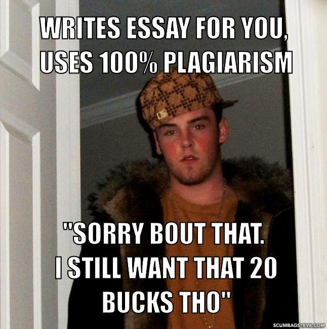 Writes essay for you
